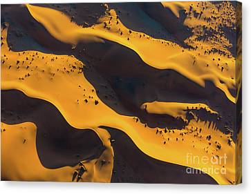 Sossusvlei Patterns Canvas Print by Inge Johnsson