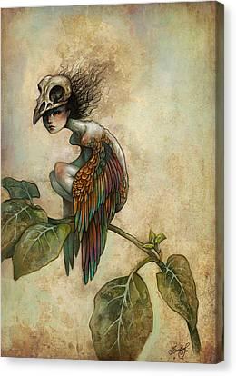 Soul Of A Bird Canvas Print by Caroline Jamhour