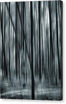 Soul Searching Canvas Print by Lourry Legarde