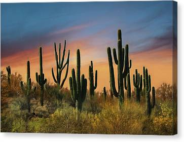 Southwest Sunset Canvas Print by Lori Deiter