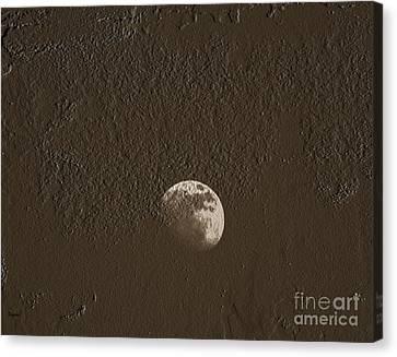 Space Dirt  Canvas Print by Steven  Digman