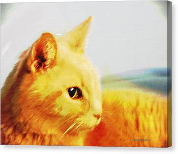 Special And Purfect Canvas Print by Lenore Senior