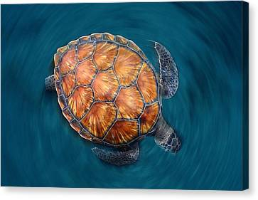 Spin Turtle Canvas Print by Sergi Garcia