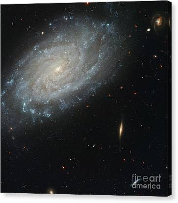 Spiral Galaxy Ngc 3370 Hst Image Canvas Print by Space Telescope Science Institute  NASA