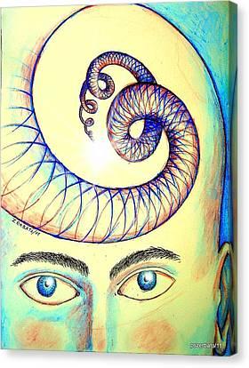 Spiral Of Knowledge Canvas Print by Paulo Zerbato