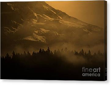 Spirit Of Chief Seattle Canvas Print by C E Dyer