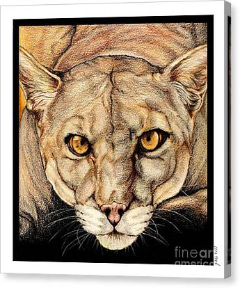 Spirit Of The Everglades Canvas Print by Sheryl Unwin