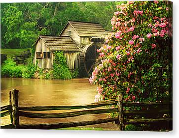Spring At The Mill Canvas Print by Darren Fisher