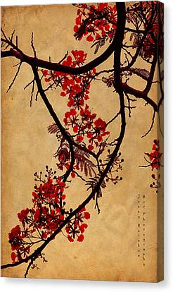 Spring Bloosom In Maldives. Flamboyant Tree I.  Japanese Style Canvas Print by Jenny Rainbow