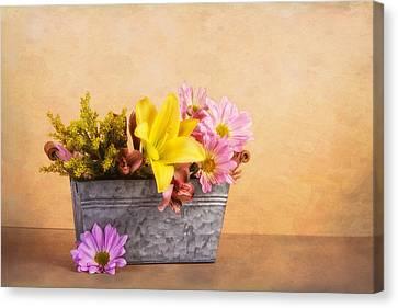Spring Bounty Canvas Print by Tom Mc Nemar