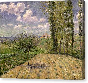 Spring Canvas Print by Camille Pissarro