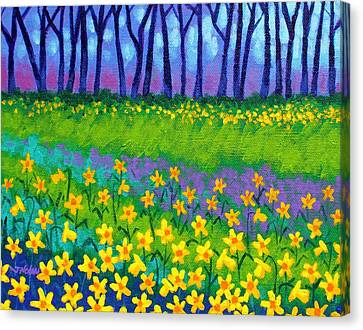 Spring Daffodils Canvas Print by John  Nolan