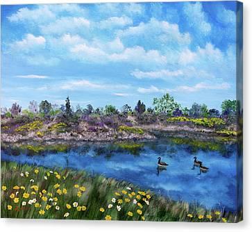 Spring Daisies At Los Gatos Lake Canvas Print by Laura Iverson