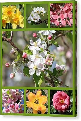 Spring Fling Collage Canvas Print by Carol Groenen