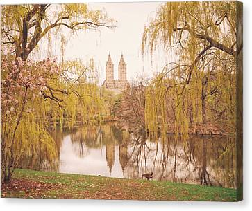 Spring In Central Park Canvas Print by Vivienne Gucwa