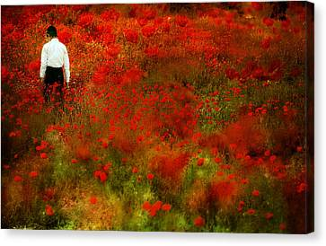 Spring In Jerusalem Canvas Print by Gilad Benari