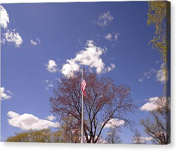 Spring In New England Canvas Print by Kate Gallagher