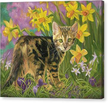 Spring Kitten Canvas Print by Lucie Bilodeau