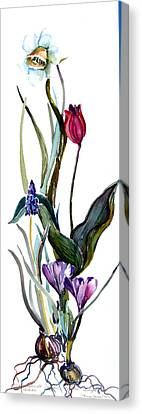 Spring Mix Canvas Print by Mindy Newman