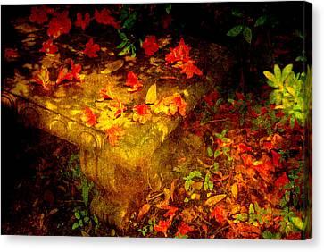 Spring Or Autumn Canvas Print by Susanne Van Hulst