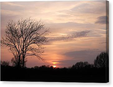 Spring Sunset Canvas Print by Mark Severn