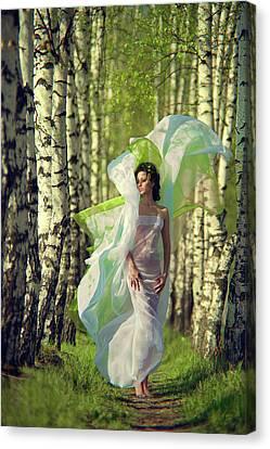 Spring Canvas Print by Vladimir Zotov