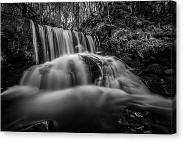 Spring Waterfall In A Remote Peaceful Forest. Canvas Print by Daniel Kay