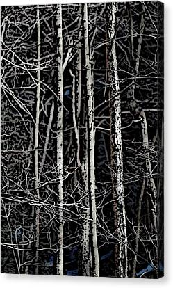 Spring Woods Simulated Woodcut Canvas Print by David Lane