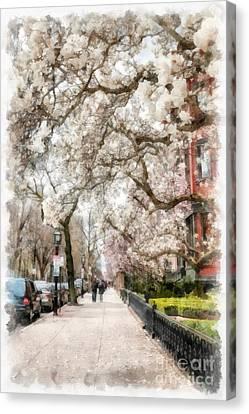 Springtime Boston Back Bay Canvas Print by Edward Fielding