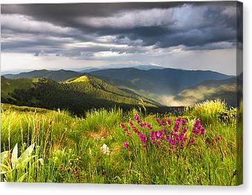 Springtime Mountain Canvas Print by Evgeni Dinev