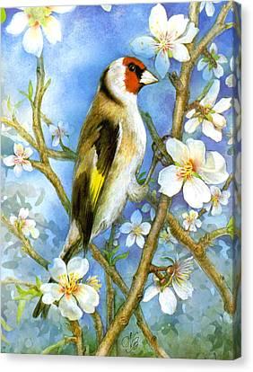 Springtime Canvas Print by Natalie Berman