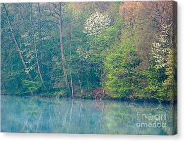 Springtime Reflection Canvas Print by Alexander Kunz