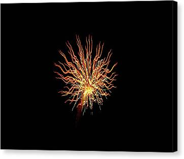 Squiggles 05 Canvas Print by Pamela Critchlow