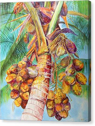 Squire's Coconuts Canvas Print by AnnaJo Vahle