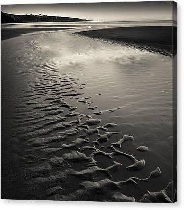 St Cyrus Sand Ripples Canvas Print by Dave Bowman