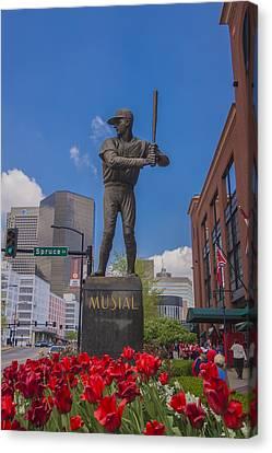 St. Louis Cardinals Busch Stadium Stan Musial Roses Canvas Print by David Haskett