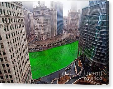 St Patrick's Day Chicago  Canvas Print by Jeff Lewis