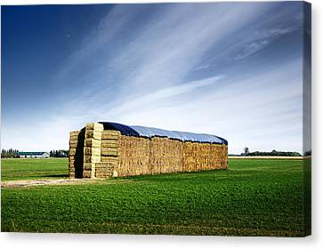 Stack Of Hay Bales Canvas Print by Donald  Erickson