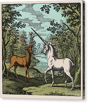 Stag And Unicorn 18th Century Canvas Print by Science Source