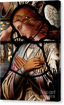 Stained Glass Window Angel Canvas Print by Unknown