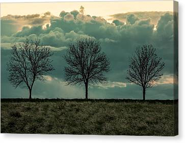 Stand Against The Storm Canvas Print by Todd Klassy
