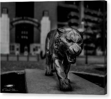 Stand Right Up And Roar Canvas Print by Damien Tullier