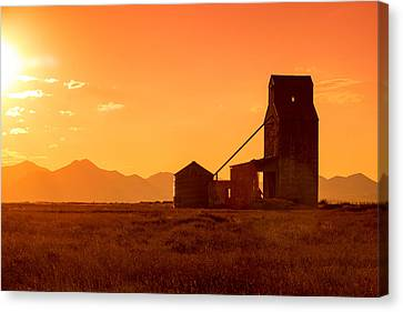 Stanford Sunset Canvas Print by Todd Klassy