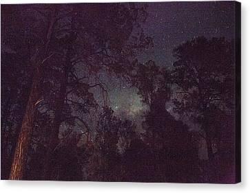 Star Gazing Canvas Print by Az Jackson