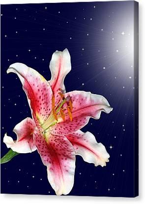 Stargazing Canvas Print by Kristin Elmquist