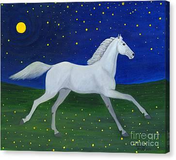 Starry Night In August Canvas Print by Anna Folkartanna Maciejewska-Dyba