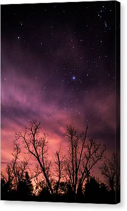 Stars At Sunset Canvas Print by Shelby  Young