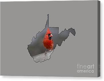 State Bird Of West Virginia Canvas Print by Dan Friend