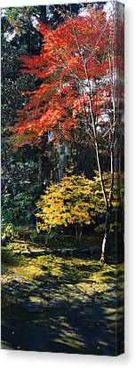 Statue Of Buddha In A Garden, Anraku-ji Canvas Print by Panoramic Images