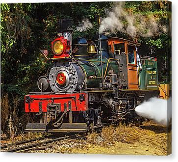 Steam Train Dixiana Canvas Print by Garry Gay